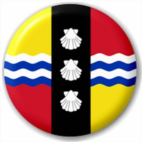 Small 25mm Lapel Pin Button Badge Novelty Bedfordshire Flag
