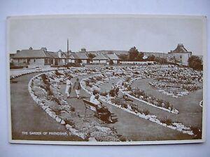 Stranraer-Garden-of-Friendship-Valentine-039-s-Carbotone-Series