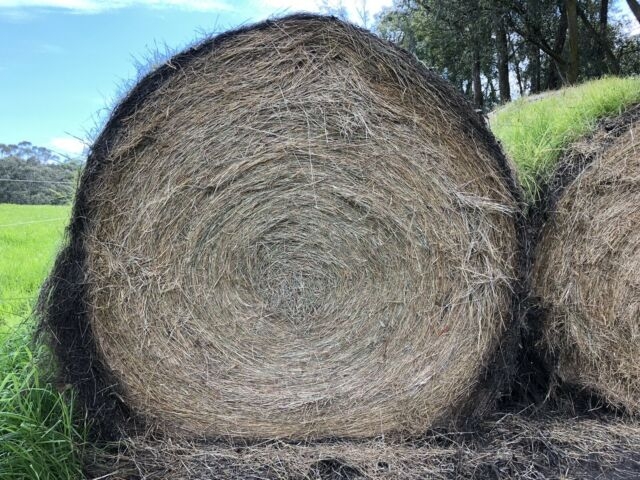 5x4 Round Hay Bales, Cattle, Sheep, Horses