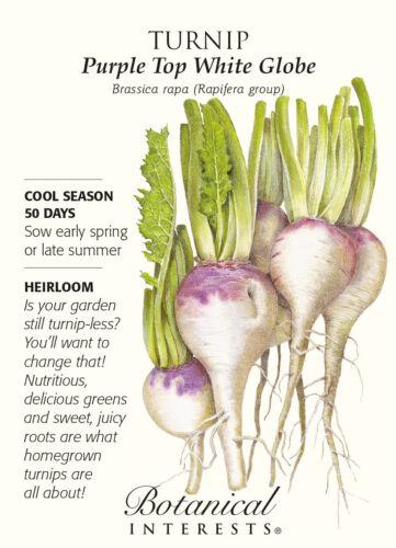 8 grams Purple Top White Globe Turnip Seeds