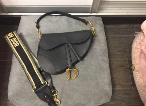 Dior Saddle Belt Bag