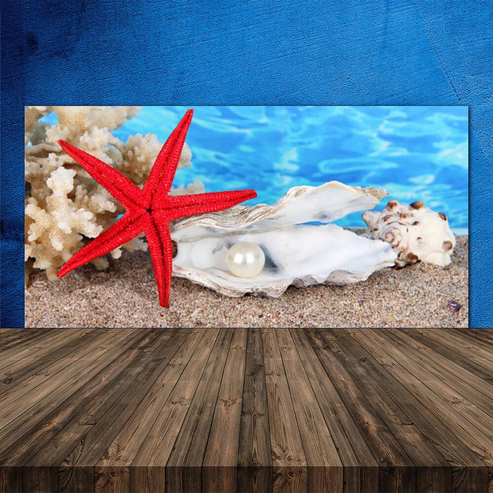 Crédence de cuisine en verre Panneau 120x60 Nature étoile De Mer Coquilles