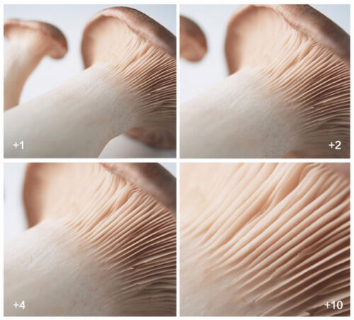 37mm 10 Close-Up Filter Makrolinse Nahlinse Close Up CloseUp 37 mm Dioptrien