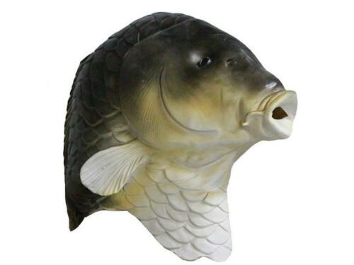 BROWN Fish CARP Mask Full Head Latex Fancy Dress Costume Animal Goldfish COY