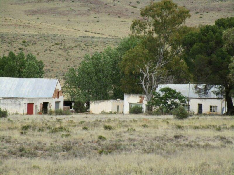 MIDDELBURG 2,677 ha mixed, veld sheep and cattle farm for sale
