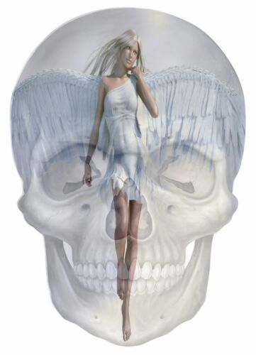 Gothic Skull Double Exposure Fantasy Angel View Wall Sticker Wallpaper Mural 703