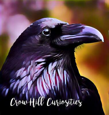 Crow Hill Curiosities