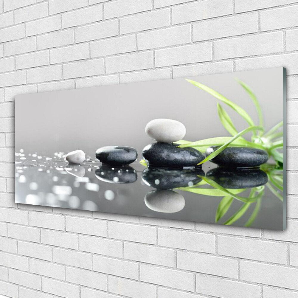 Impression sur verre Image tableaux 125x50 Art Pierres Herbe