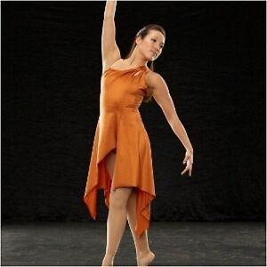 Stunning Ballet Lyrical Dance Dress Costume Child Small & Medium Clearance