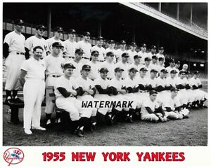 MLB-1955-New-York-Yankees-Team-Picture-Black-amp-White-8-X-10-Photo-Picture