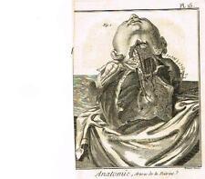 Diderot's Enclyclopedie - ANATOMIE, ARTERES DE LA POITRINE (LUNGS) - c1750
