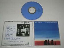EDIE BRICKELL/PICTURE PERFECT MORNING(GEFFEN/GED24715)CD ALBUM