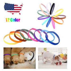 12PCS-Whelping-Puppy-Dog-Cat-Pet-ID-Identification-Bands-Litter-Kitten-Collar-US