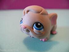 petshop cochon d inde hamster marron / brown guinea pig N° 288