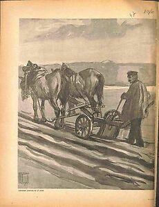 Agriculteur-Farmer-Laboureur-Charrue-Chevaux-Horses-d-039-Hermann-Vogel-1916-WWI