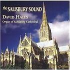 The Salisbury Sound (2003)