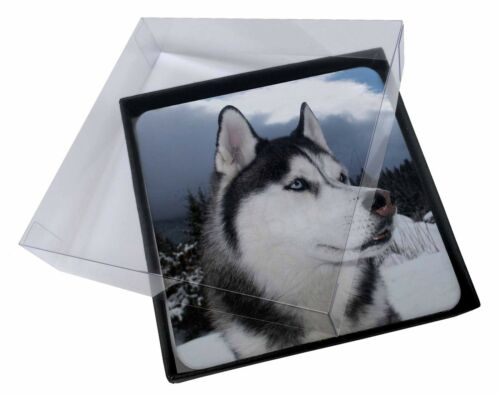 4x Siberian Husky Dog Picture Table Coasters Set in Gift Box AD-H52C