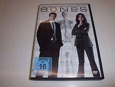 DVD  Bones: Die Knochenjägerin - Season 1 (6 DVDs) In der Hauptrolle David Borea