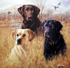 James Killen Marsh Masters Lab Dog Hunting Print AP 18 x 18
