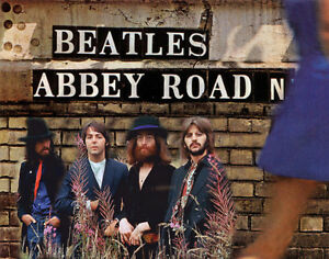 The-Beatles-Abbey-Road-Album-Back-Cover-Photo-Print-14-x-11-034