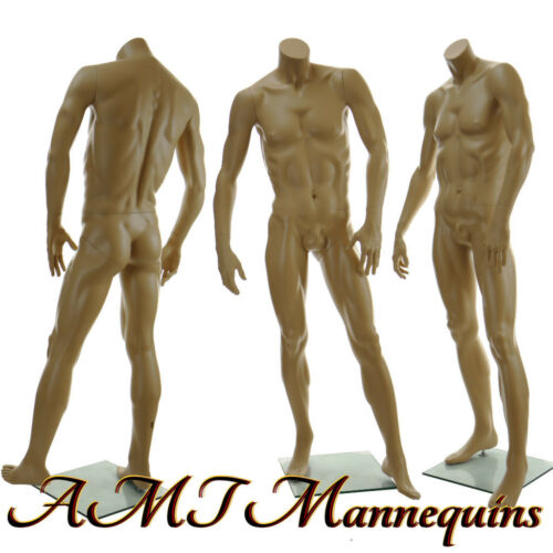"muscular manikin headless skin tone David X-X 5/'8/"" Male headless mannequin"