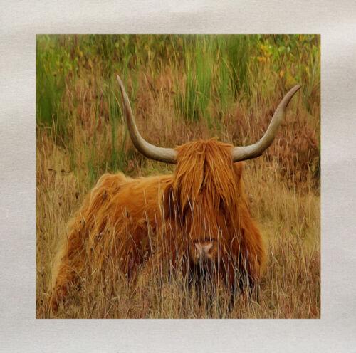 Highland Cow Scottish Cattle  Fabric Panel Cushion Upholstery Craft