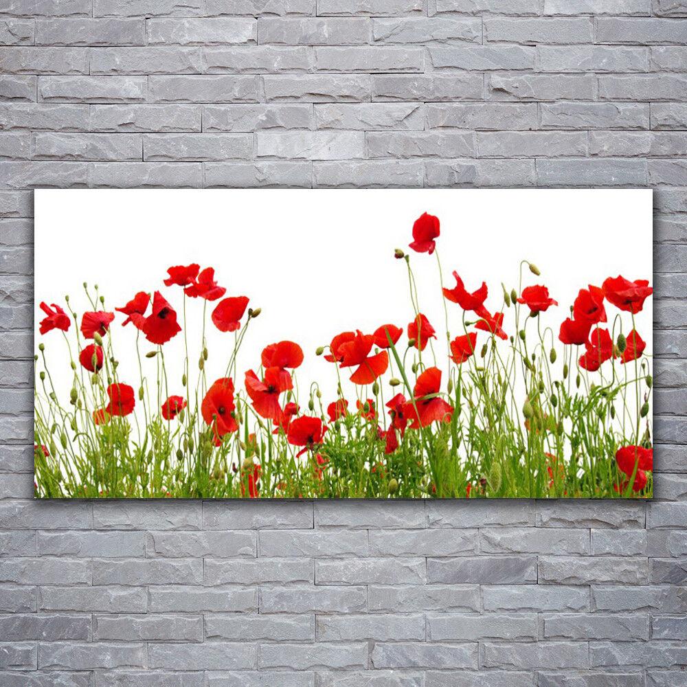Impression sur verre Wall Art 120x60 Photo Image Meadow Coquelicots Nature