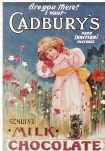 CADBURY'S DAIRY MILK ADVERTISING COLOUR  POSTCARD
