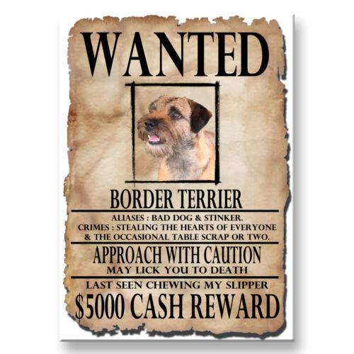 BORDER TERRIER Wanted Poster FRIDGE MAGNET New DOG