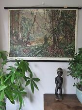 VINTAGE PULL / ROLL DOWN SCHOOL WALL CHART / POSTER OF A TROPICAL RAINFOREST