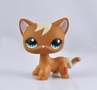 Pet Short Hair Cat Animal child girl boy figure loose cute LP846
