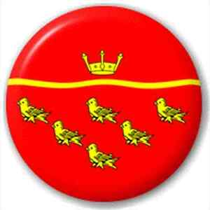Small-25mm-Lapel-Pin-Button-Badge-Novelty-East-Sussex-Flag