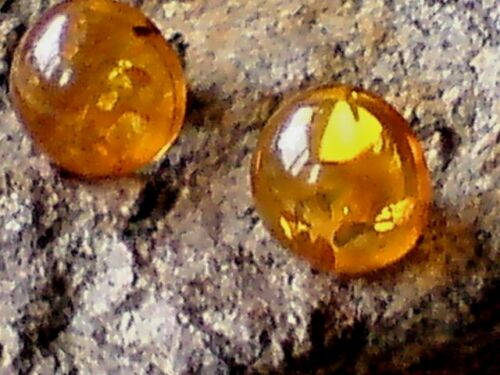 STERLING SILVER 10mm STUD EARRINGS with AMBER CABOCHON STONES £12.50  NWT