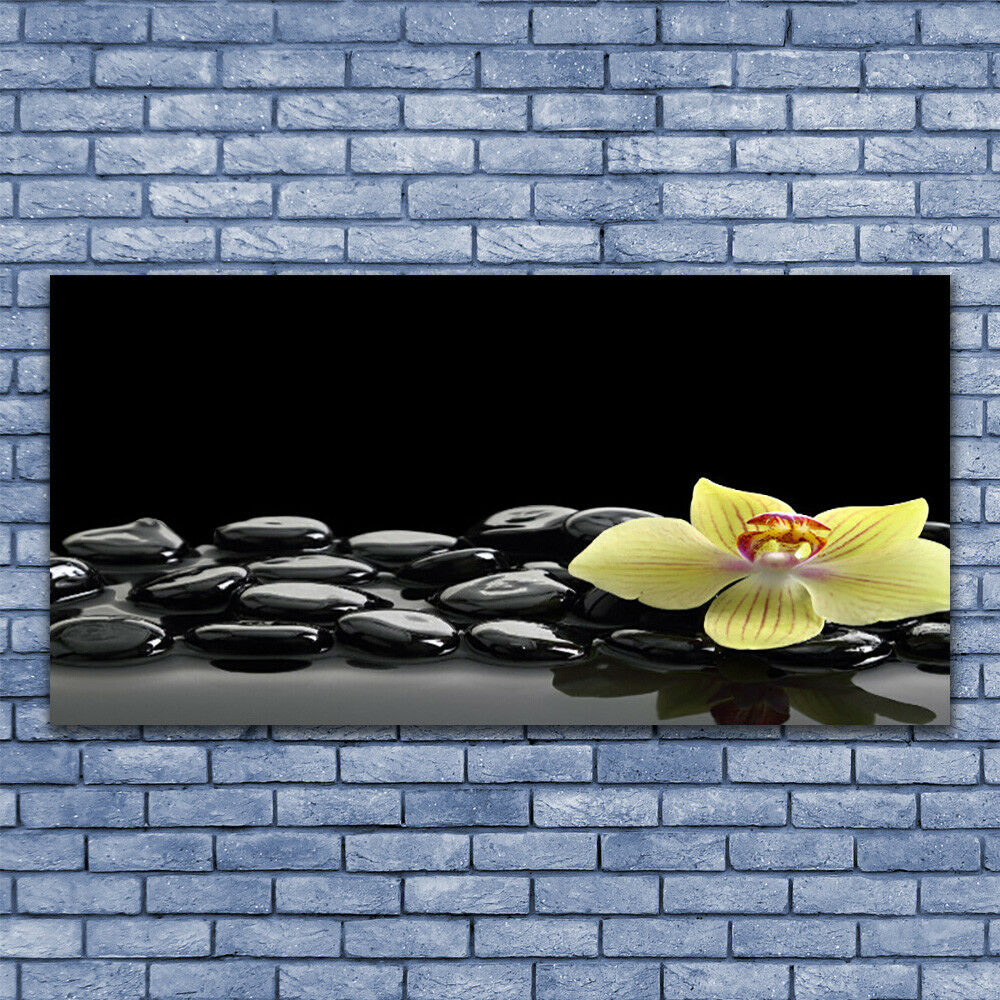 Print on Glass Wall art 140x70 Picture Picture Picture Image Flower Stones Kitchen d250cf