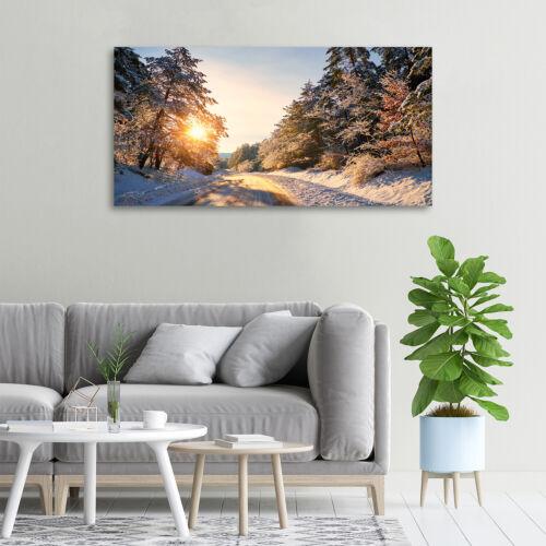 Leinwandbild Kunst-Druck 100x50 Bilder Landschaften Straße Winterwald