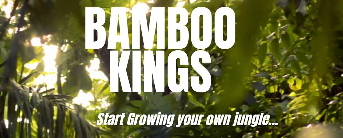 bambookings