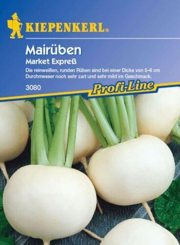 Market Expreß F1 Mairüben 3080 Rübe für Ganzjahreskultur Kiepenkerl