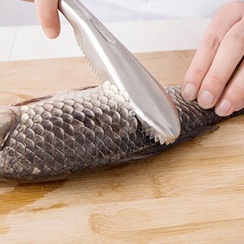 Edelstahl Fisch Fischschaber Entschupper Fischschuppenentferner nützlich J Neif