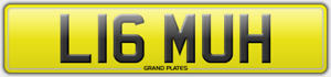 LIAM-NUMBER-PLATE-LIAMS-UH-REGISTRATION-LIAAM-NO-FEES-LIAM-039-S-REG-ASSIGNED-4U