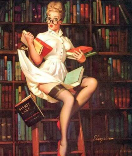 Get 1 FREE! Buy 2 Pin-Up in Library 8x10 Fabric Block Join My Book Club
