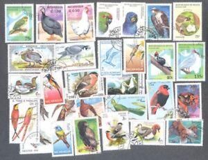 Birds-100-tutti-diversi-COLLEZIONE-DI-FRANCOBOLLI