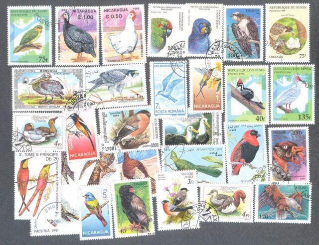 Birds 100 tutti diversi-COLLEZIONE DI FRANCOBOLLI -
