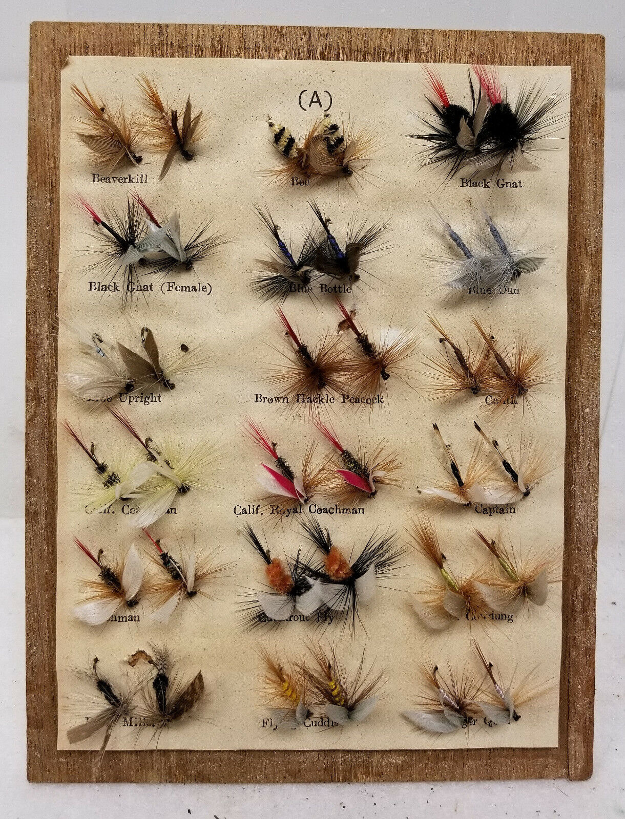 Antique Vintage Display of Fly Fishing Flies Lures Insects Collection