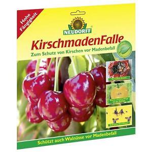 Das Bild Wird Geladen NEUDORFF KirschmadenFalle 7 Stueck Kirschen  Maden Falle Schutz