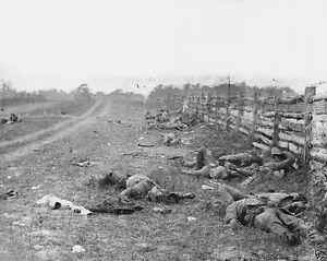 New-Civil-War-8x10-Photo-Dead-Confederate-soldiers-on-Hagerstown-Road-Antietam