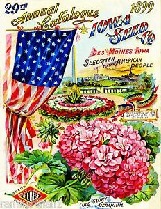 1899 Salzer Gourds Vintage Flowers Seed Packet Catalogue Advertisement Poster