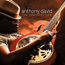 Anthony David - Powerful Now [New CD]