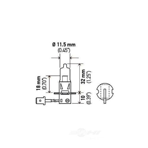Fog Light Bulb-2 Door Hella H3 100W