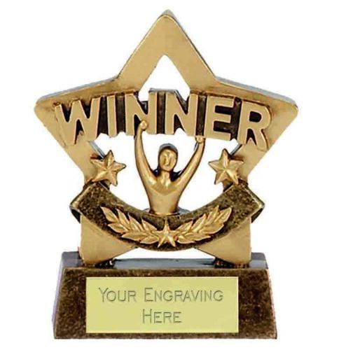 free engraving /& p/&p 8cm Mini Star Winner Trophy Award