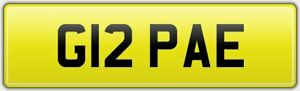 OLD-QUALITY-2-DIGIT-PRIVATE-DVLA-REG-NUMBER-PLATE-ALL-FEES-PAID-G12-PAE-PA-PE